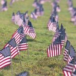 U.S. flags lined up in green grass